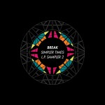 Break — Simpler Times LP Sampler 2