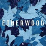 Etherwood — The Rain Will Fall (feat. LSB) [Official Video]